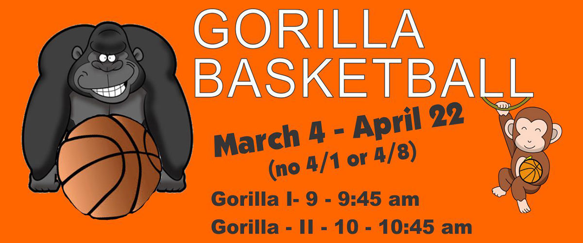Gorilla Sports Basketball